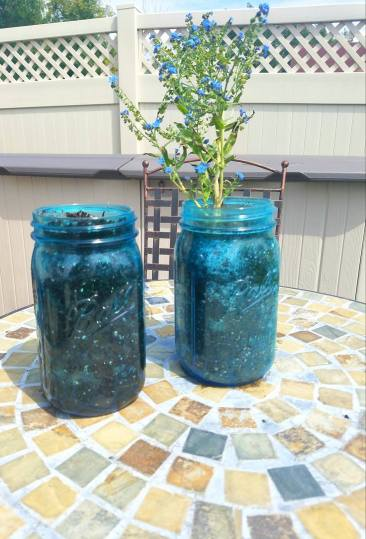 On the right is the forget-me-nots and on the left will be the chamomile plant